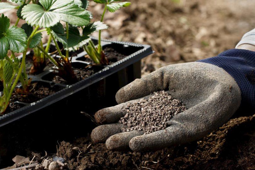 fertiliser jardin