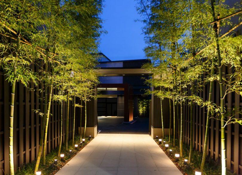 jardin bambou