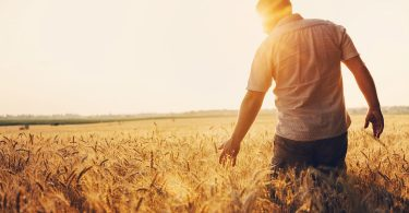 métier avenir agriculture
